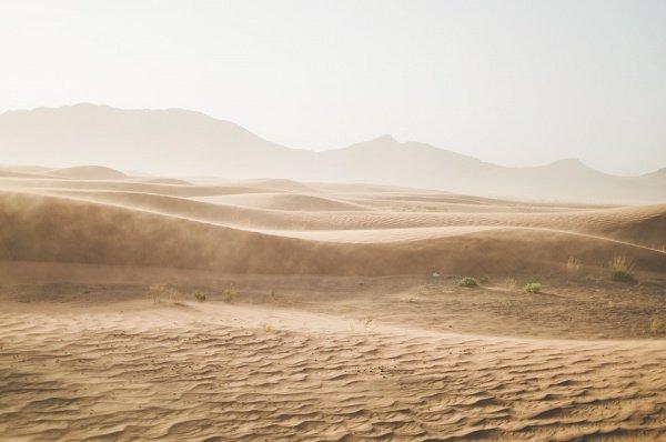 Сахель, по словам ученых, чувствителен к изменению осадков, здесь нередки сильные засухи, приводящие к масштабному голоду