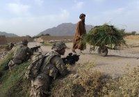 Число жертв конфликта в Афганистане стало рекордным