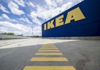 Занавески, очищающие воздух, выпустит IKEA