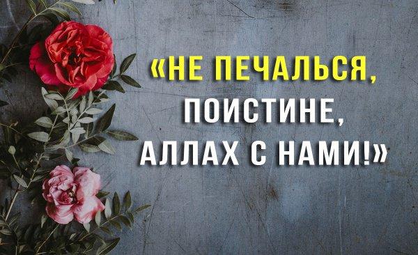 Стихотворения Мавляны Джалаладдина Руми