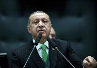 Эрдоган раскритиковал саммит ЕС – ЛАГ
