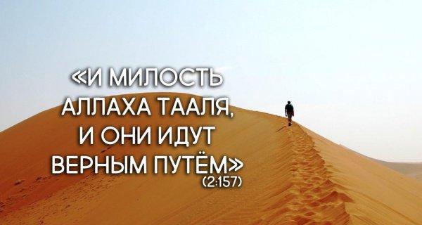 Какую награду получит верующий за пережитое горе?