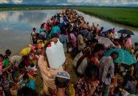 Бангладеш больше не может принимать мусульман-рохинья