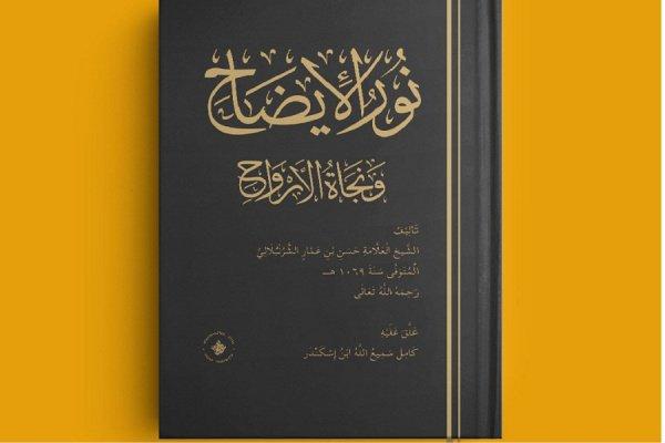 Книга издана на арабском языке.