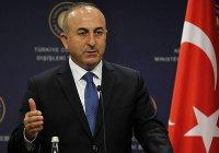 Турция обвинила исламские страны в «трусости и слабости»