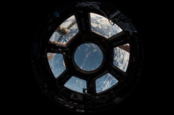 «Я на 2 дюйма выше, чем была, когда полетела!» — сообщила астронавтка