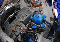На борту корабля «Союз» побывала плюшевая Земля Илона Маска