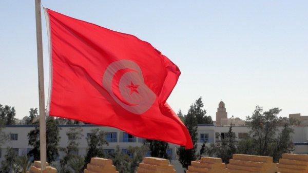 В одной из клиник Туниса погибли сразу 11 новорожденных.