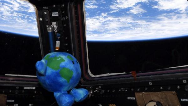 Игрушка прибыла на космическую станцию на беспилотном корабле Crew Dragon