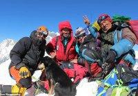 В Гималаях пес покорил пик вместе с альпинистами (ФОТО)