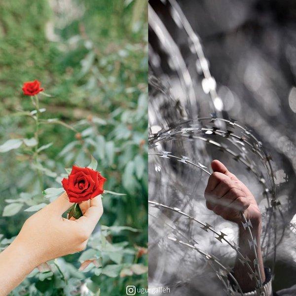8 фото, после которых вам больше не захочется жаловаться на жизнь