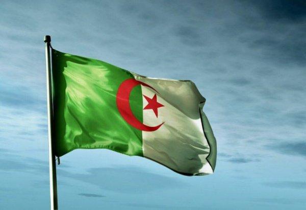 В Алжире продолжаются массовые протесты в преддверии выборов президента.