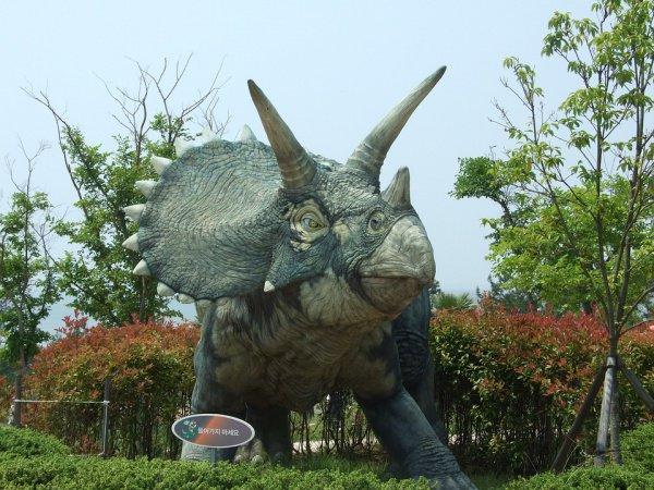 Галеонозавры, по словам специалистов, были травоядными динозаврами