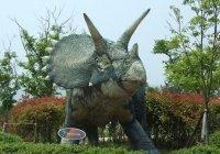 Обнаружен новый вид травоядных динозавров