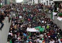 Алжирцев могут перестать пускать во Францию