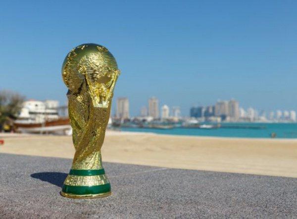 Матчи ЧМ-2022 могут принять несколько стран.