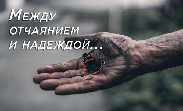"""""""Отчаиваются в милости Аллаха только люди неверующие"""""""