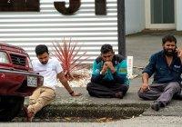В Турции назвали причину терактов в мечетях Новой Зеландии