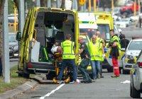 Интерпол предложил помощь в расследовании атак на мечети Новой Зеландии