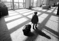 Стало известно, куда родители с младенцами летают чаще всего
