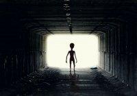 Развеян миф о посещении инопланетянами Земли