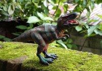 Тираннозавр Скотти оказался самым крупным представителем вида