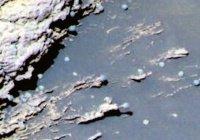 Ученые: ровер НАСА запечатлел «первых инопланетян»