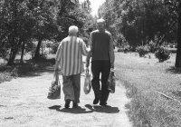 Раскрыта необычная связь между гормонами и долголетием