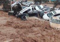 Наводнения в Иране унесли жизни 19 человек