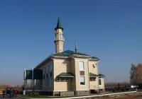 ДУМ РТ запускает новый сезон акции «Чистая мечеть»