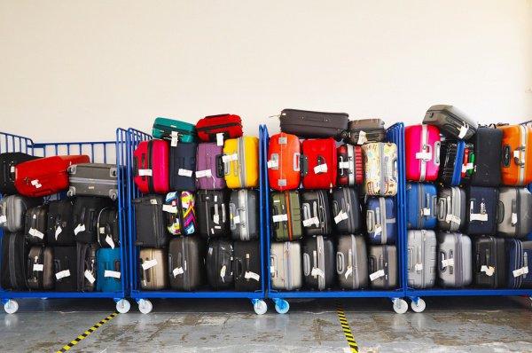 Хотя билеты без багажа обходятся на треть дешевле, по сравнению с минувшим годом доля их бронирований упала с 53% до 48%
