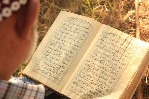 """""""Те книги, которые я нахожу в домах своих соотечественников – это их последнее наставление, пожелание нам, продолжателям татарского этноса"""""""