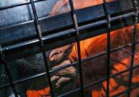 Житель Австралии получил 18 лет тюрьмы за подготовку теракта