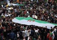 Шестая пятница «революции улыбок» проходит в Алжире