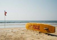 Белые пляжи Гоа почернели (ВИДЕО)