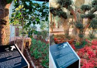 В Дубае открылся Парк Корана