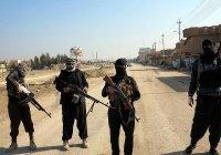 Ирак потребует компенсации от стран-поставщиков террористов