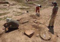 В ОАЭ нашли артефакты возрастом 2 тысячи лет