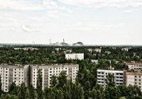 Испания построит в Чернобыле солнечную электростанцию