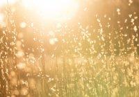"""""""Солнце плывет к своему местопребыванию..."""" Что говорится в Коране о солнце?"""