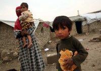 Более половины жителей Афганистана живут за чертой бедности