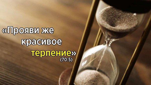 Терпение осознанное и терпение неизбежное