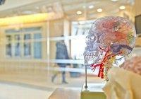 В Англии из черепа девушки начал выпадать мозг