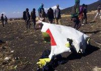 Причиной крушения Boeing в Эфиопии могла стать птица