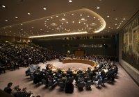 ООН проведет экстренное заседание Совбеза по Ливии