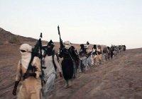 Пентагон доложил, что ИГ может воскреснуть