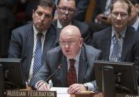 Небензя назвал число вернувшихся на родину сирийцев