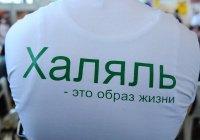 Эксперт: «халяль» - одна из главных перспектив развития российского сельского хозяйства
