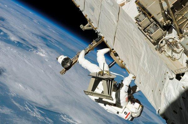 В настоящее время в НАСА проходят подготовку 11 будущих астронавтов