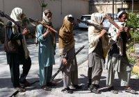 «Талибан» начал традиционное «весеннее наступление»